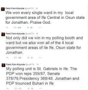 Fani Kayode Slams Those Who Say GEJ Lost In His LGA,Celebrates Victory