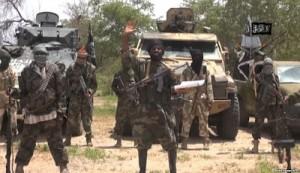 Boko Haram Attack Borno Village, Killing Seven And Looting Livestocks