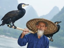Chinese Herbalist Lived 256 Years- He Revealed the Secret to Long Life