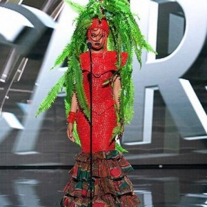 Photos  : Miss Universe Costumes Which Are More Interesting Than Miss Nigeria's 'Tree' Costume