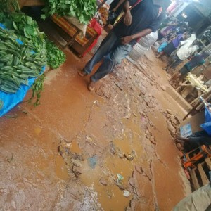 PHOTOS: Faeces Litter Around Ogbete Main Market in Enugu