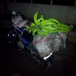 Photos: Married Man Caught Stealing Plantain Arrested by the Police In Akwa Ibom