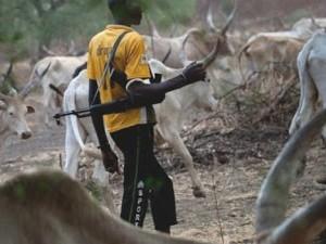 Herdsmen In Military Uniforms Attack Kaduna Village, Kill Seven