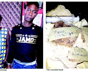 Two Held With Crushed Human Heads Hidden In Bread (Photo)