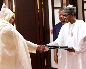 Photos: President Buhari Receives Letter Of Credence From US Ambasador Designate