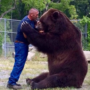 Incredible pictures of couple who live with 9ft tall bear