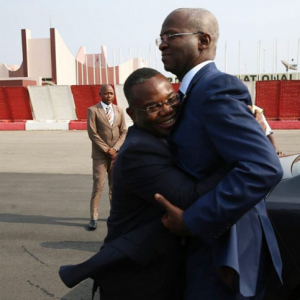 Photo: Check out Fashola's reaction when Benin Republic's Minister of Mines, Energy & Water, hugged him