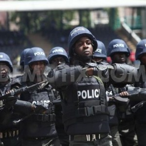 Nigeria Police Force Establishes Radio and Television Stations