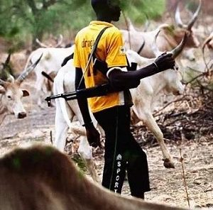 Serious Panic Rocks Rivers State as Herdsmen Storm Community, Kill Two