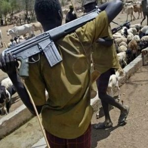 Police arrest herdsman for raping woman on her farm