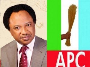 If Buhari's Change Agenda Fails, There'll Be Revolution – APC Senator Declares