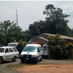 Two Die, Others Hospitalized After Eating Amala in Osun