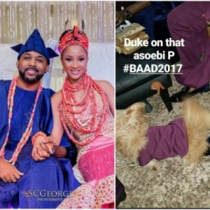#BAAD2017: This dog was part of Banky W and Adesua Etomi's asoebi, see white wedding details