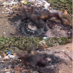 Jungle Justice: Mob Burns Robber To Death In Rivers State
