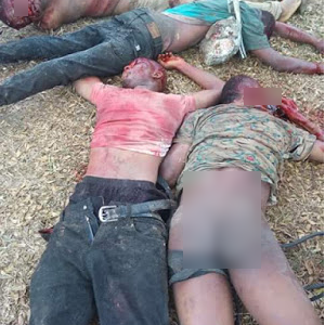 Photos : Fake SARS Operatives Gunned Down In Rivers
