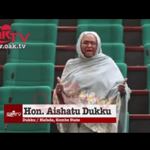 Nigerians Eat Too Much Maggi, Thats why they are Impatient & Edgy' – Reps Member Aishatu