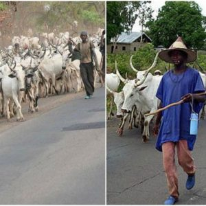 8 Herdsmen Arrested By Police Over Benue Killings