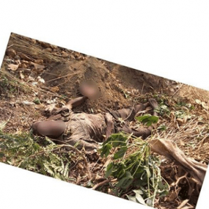 Farmer Killed By Herdsmen In Oyo