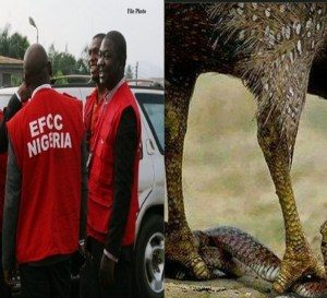 EFCC React To The Story Of The Money-Swallowing Snake At The JAMB Office