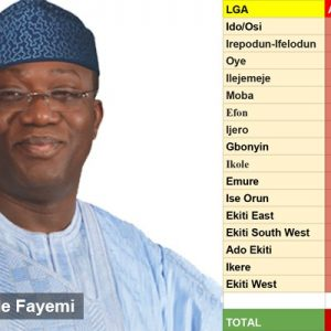 Breaking: Dr. Kayode Fayemi Wins Ekiti Governorship Election
