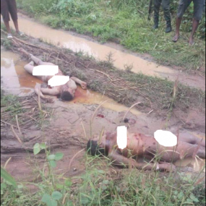 Photos: Ladies Found Dead With Body Parts Removed In Anambra State