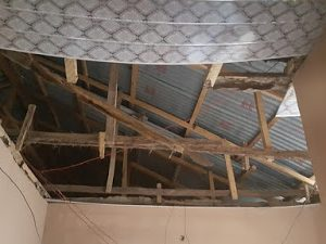 Photos: Termites Eat Up Man's Roof