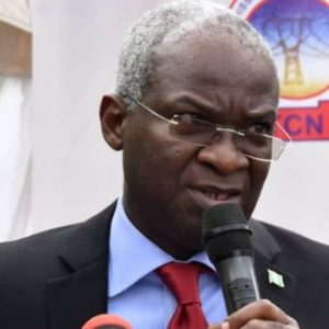 It Is Not the Federal Government's Problem If Nigerians Lack Electricity, Says Minister of Power, Fashola